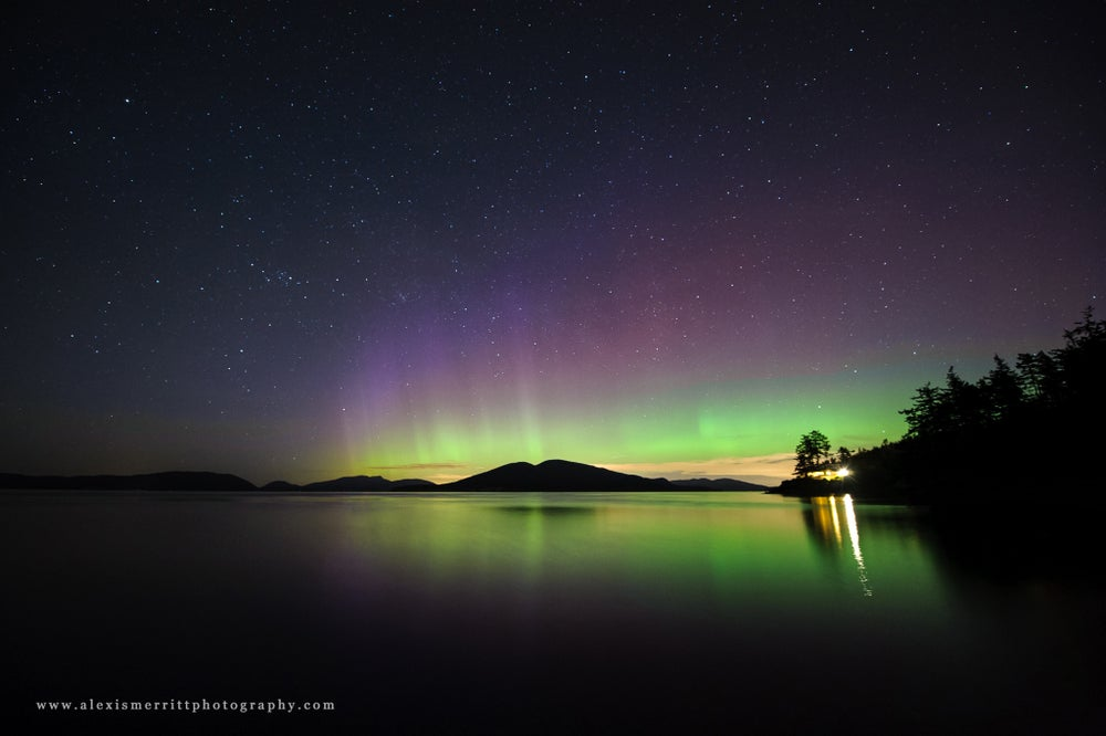 Image of Aurora Borealis - Washington Park 2