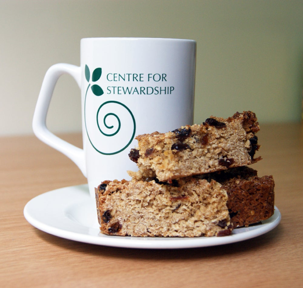 Image of Centre for Stewardship Mug