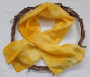 Image of Wattle - Habotai Silk Scarf