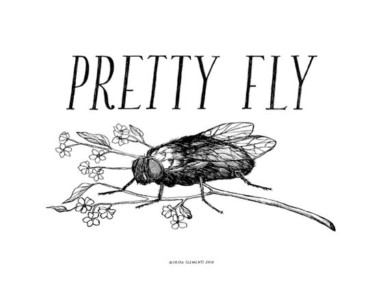 Image of Pretty Fly / Mini Print