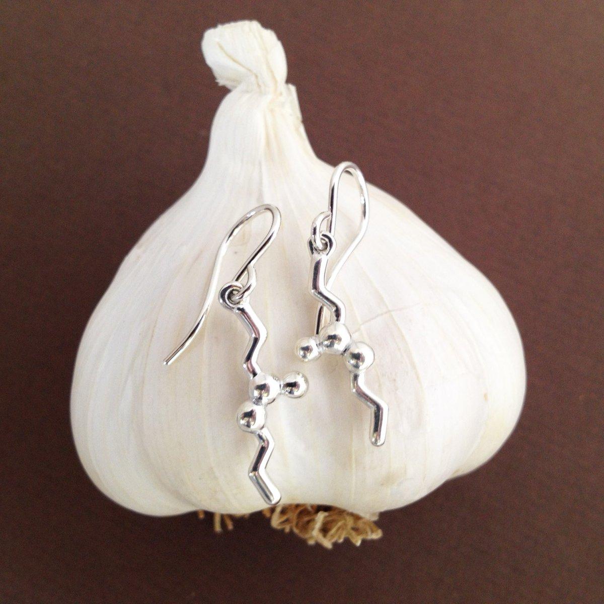 Image of allicin earrings