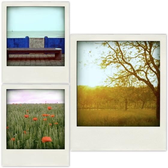 Image of Polaroid Cards SUMMERY