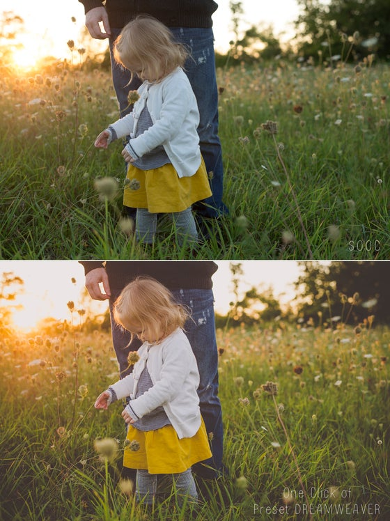 Image of Heartstrings Mini - Preset Collection