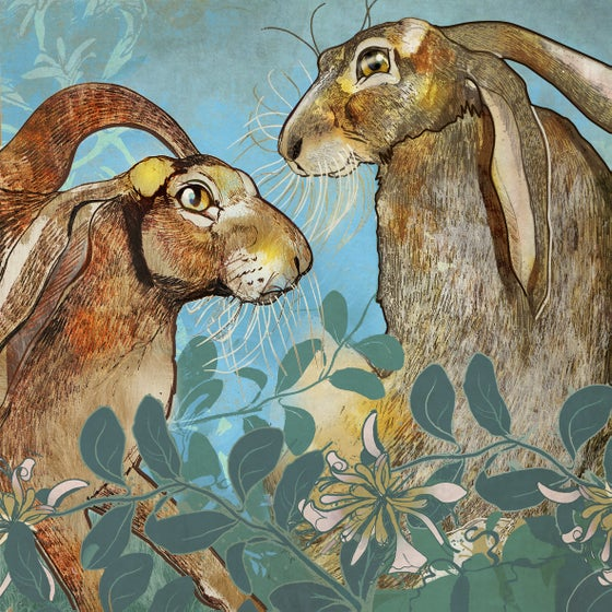Image of Hares in Honeysuckle