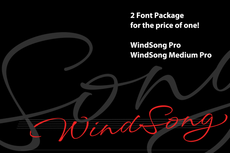 Image of WindSong Pro Bundle
