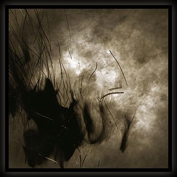 Image of cycle of naught (CD)