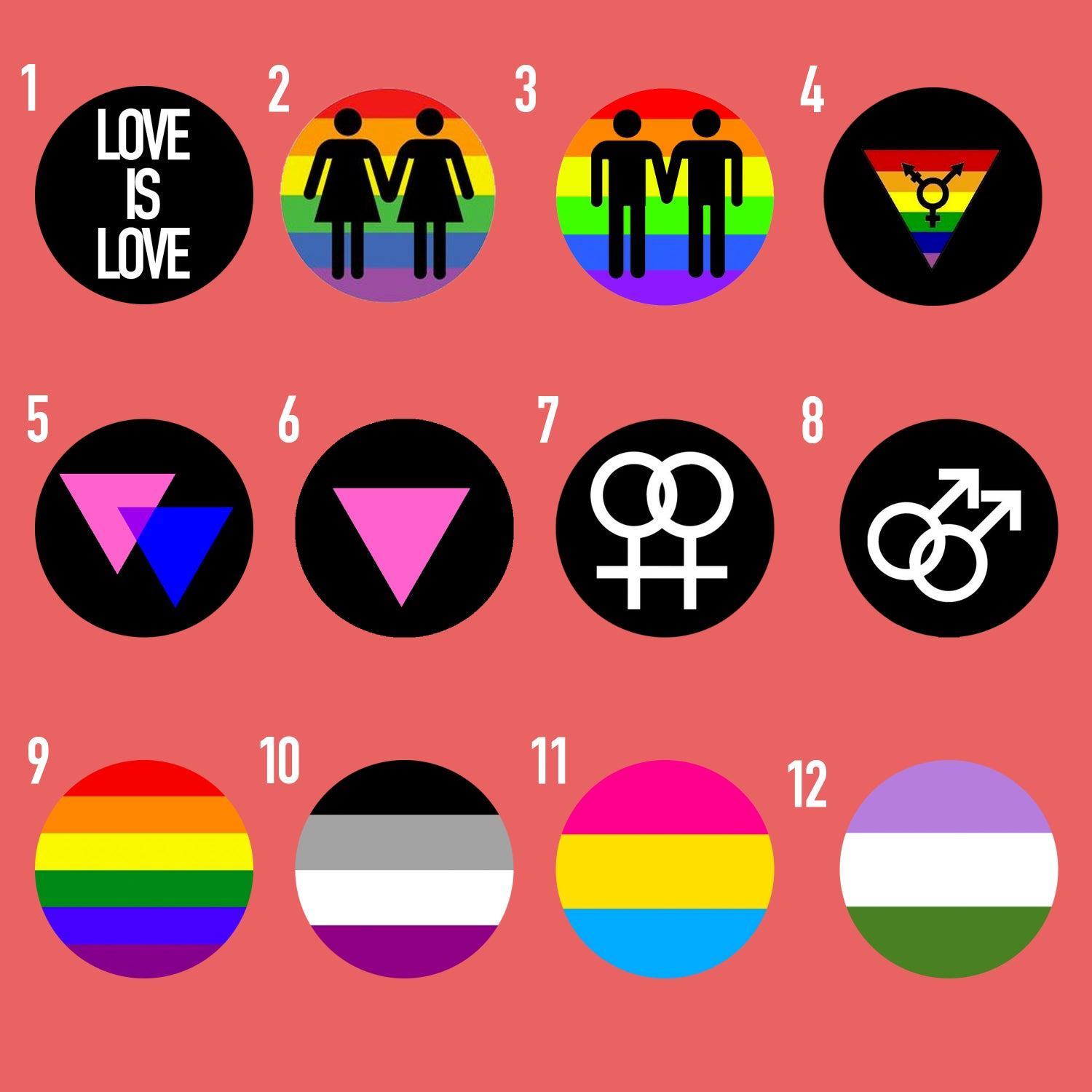 "Image of Pride Plugs (sizes 2g-2"")"