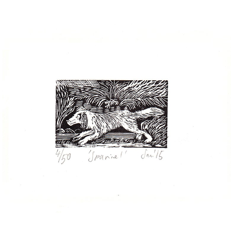 Image of 'Spaniel'- Wood engraving
