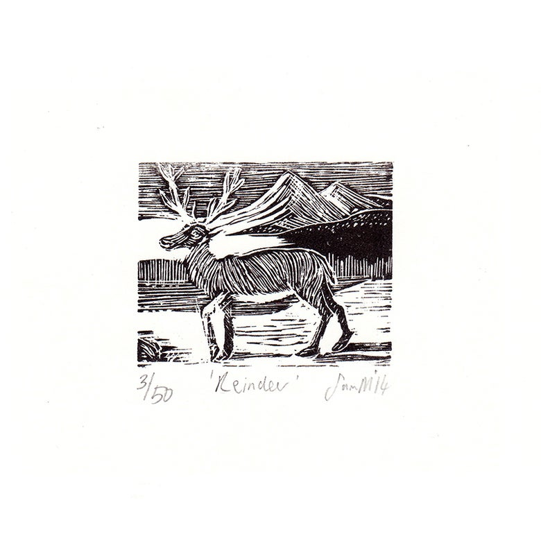 Image of 'Reindeer'- Wood engraving