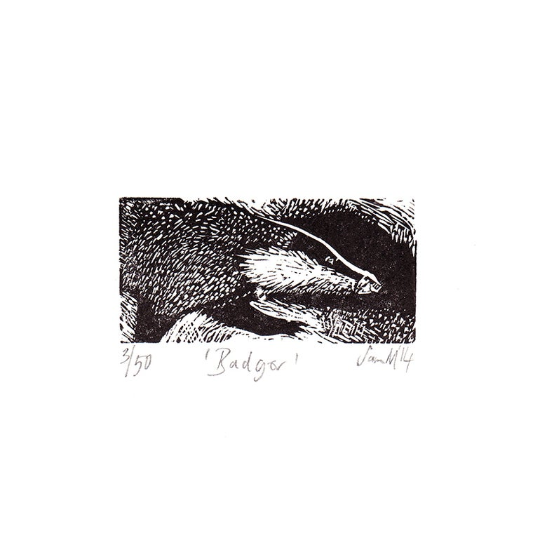 Image of Badger - wood engraving