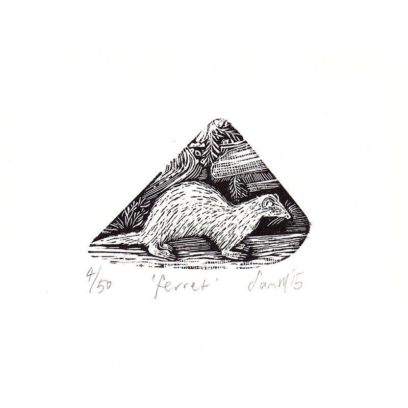 Image of 'Ferret'- Wood engraving