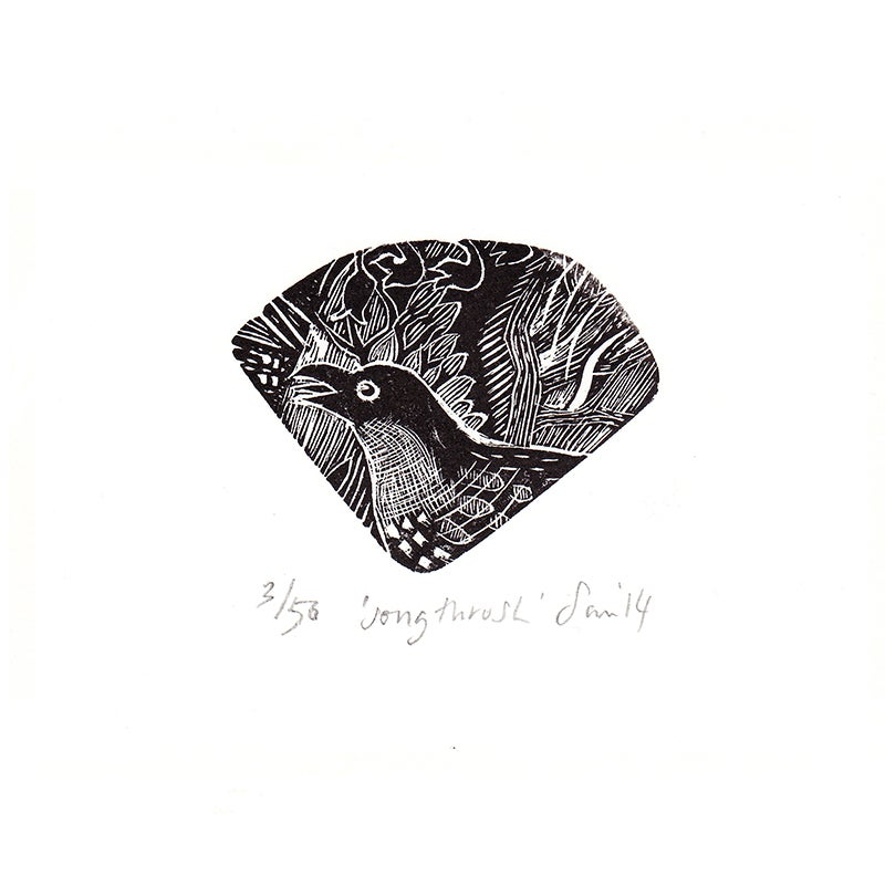 Image of 'Song Thrush'- Wood engraving