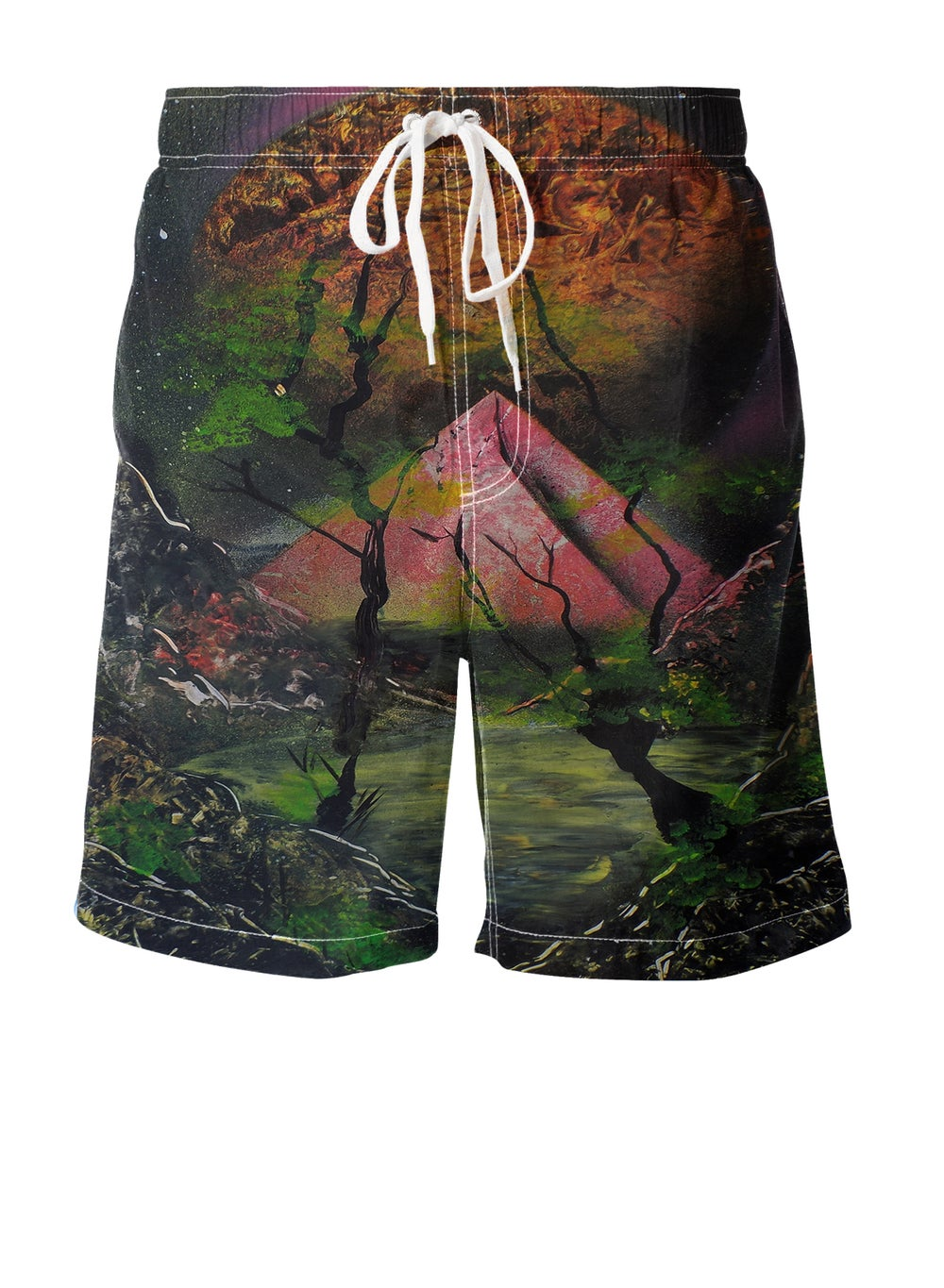 Image of Dimensions Boardshorts