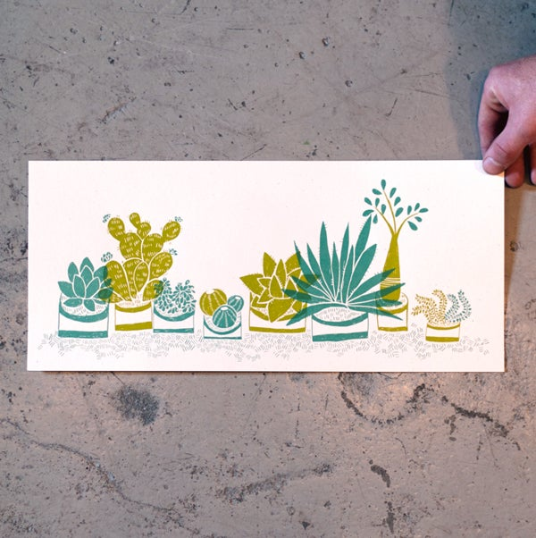 Image of Succulents