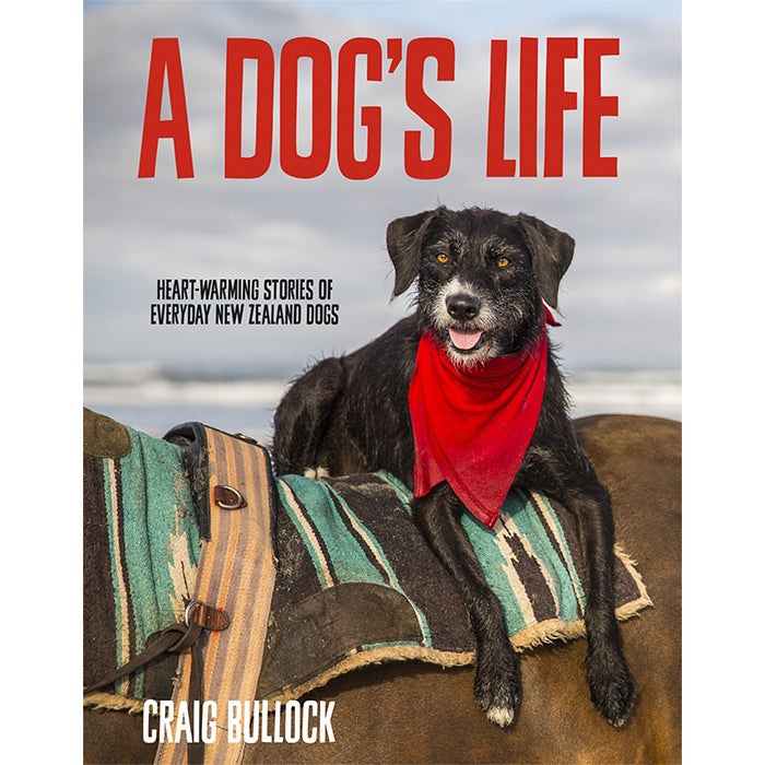 Image of A Dog's Life