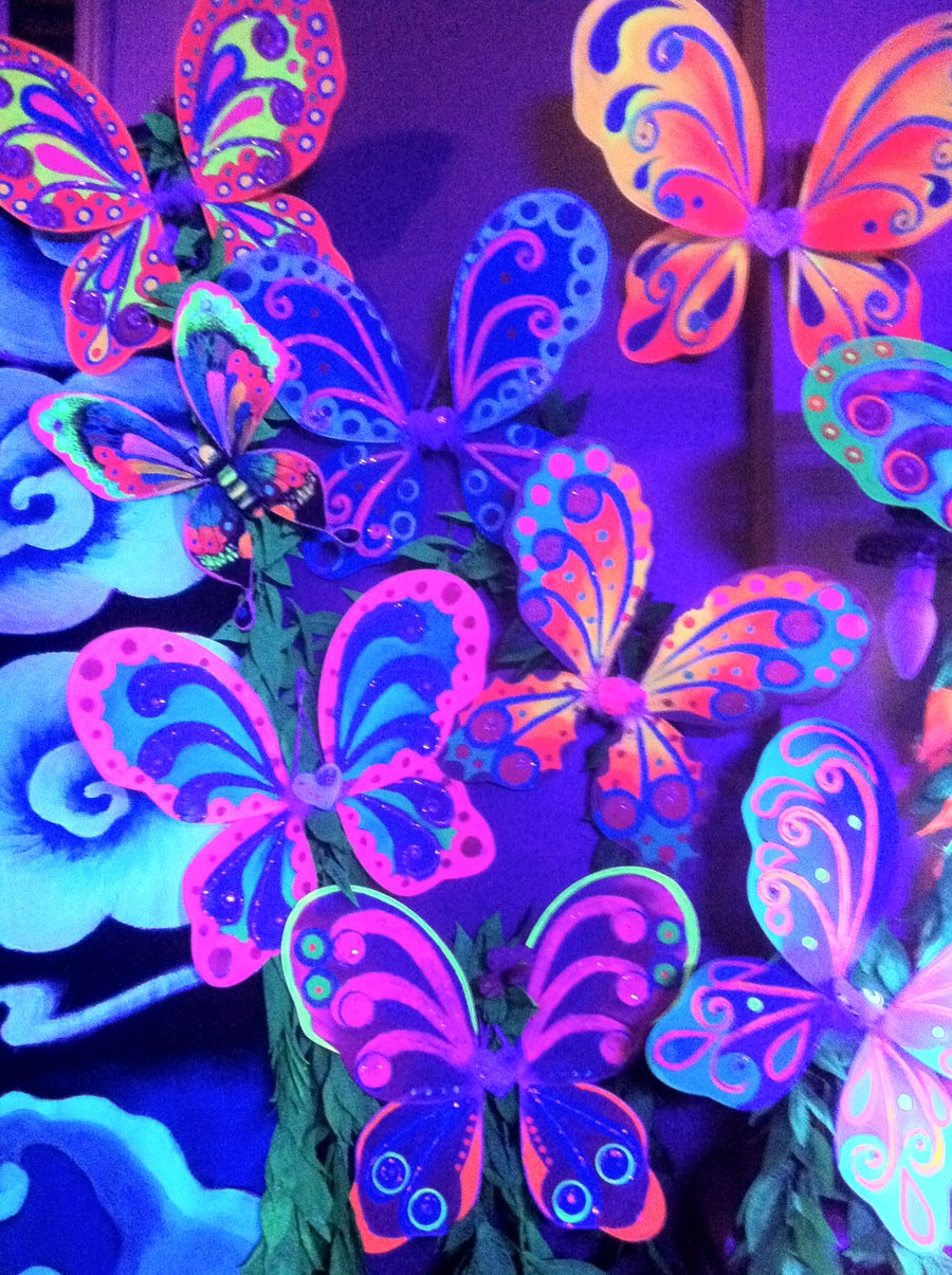 Image of Handpainted Butterfly Wings ! Blacklight Reactive
