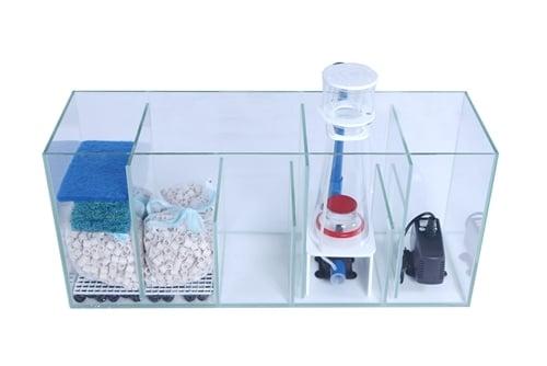 Image of 100 Gallon Complete Starfire Aquarium