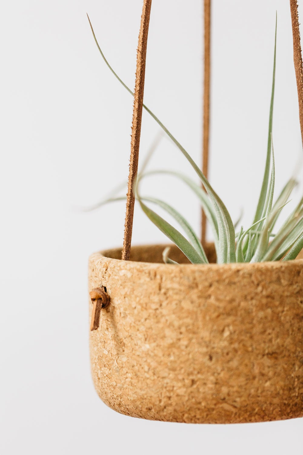Image of Small Hanging Planter