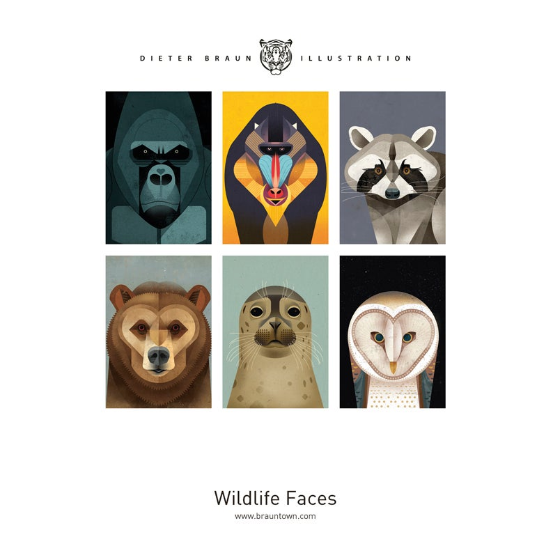 Image of Wildlife Faces