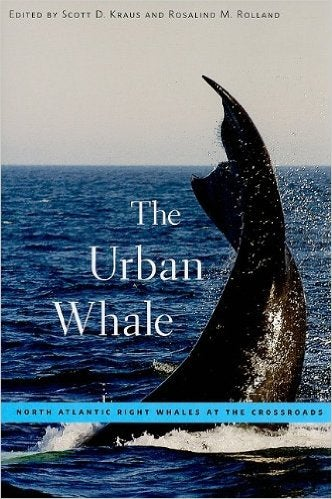 Image of The Urban Whale Book