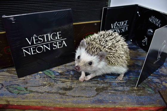 Image of Vêstige - Neon Sea (Album) CD