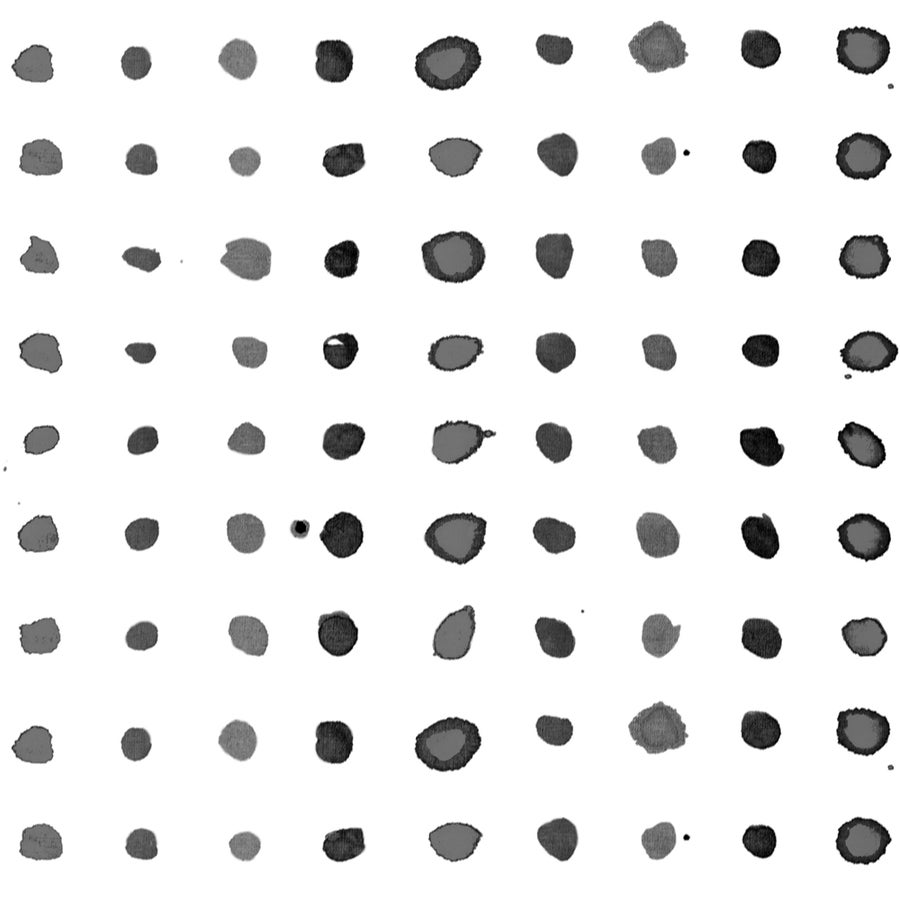 Image of Spots in black/white