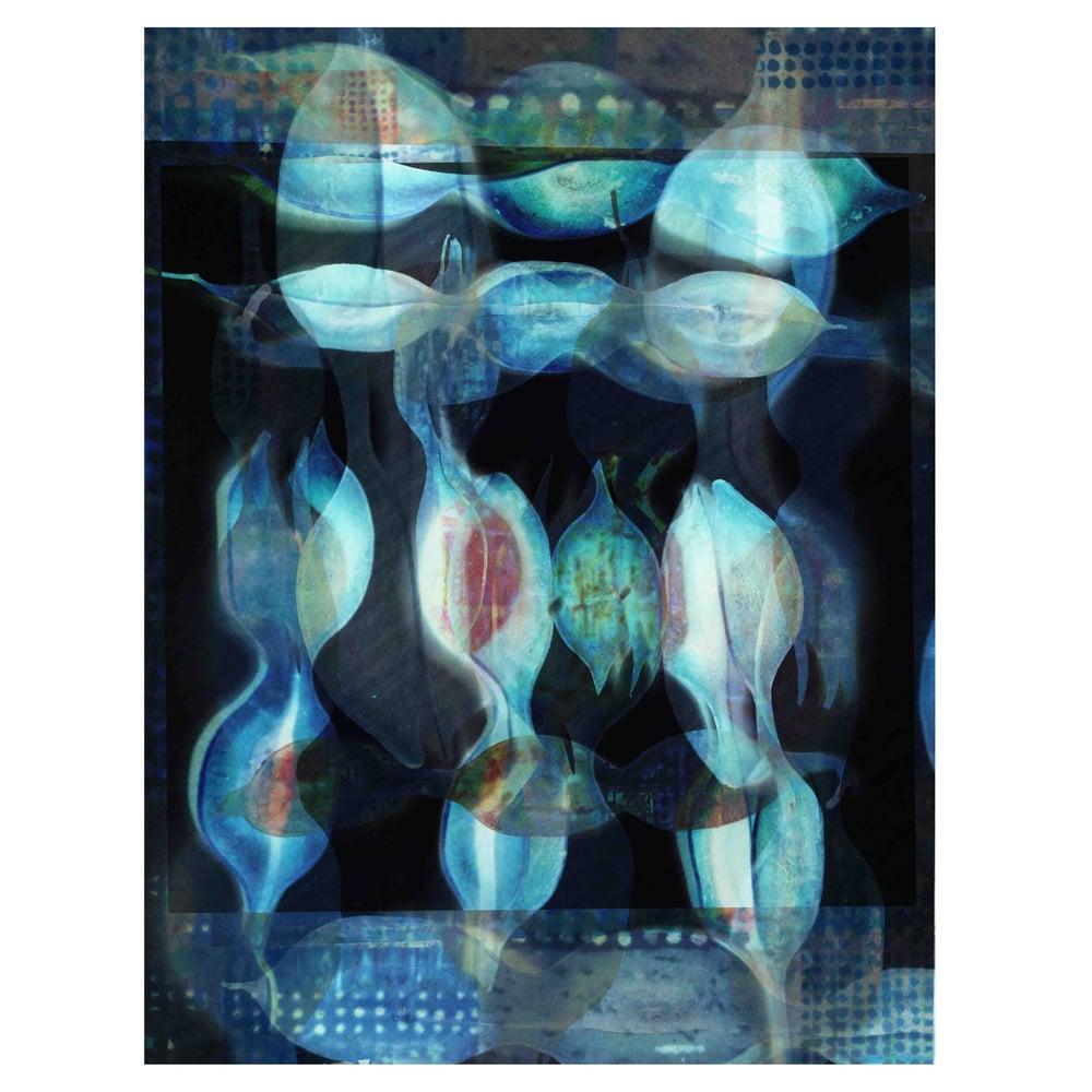 Image of NEW Digital Art Prints: Seed Rhythms