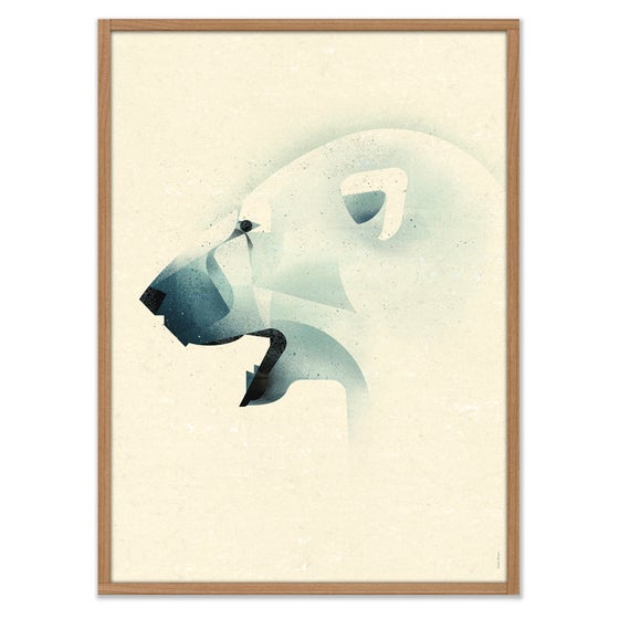 Image of POLAR BEAR