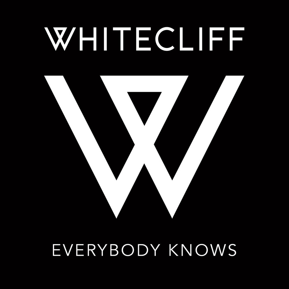 Image of Everybody Knows - Single