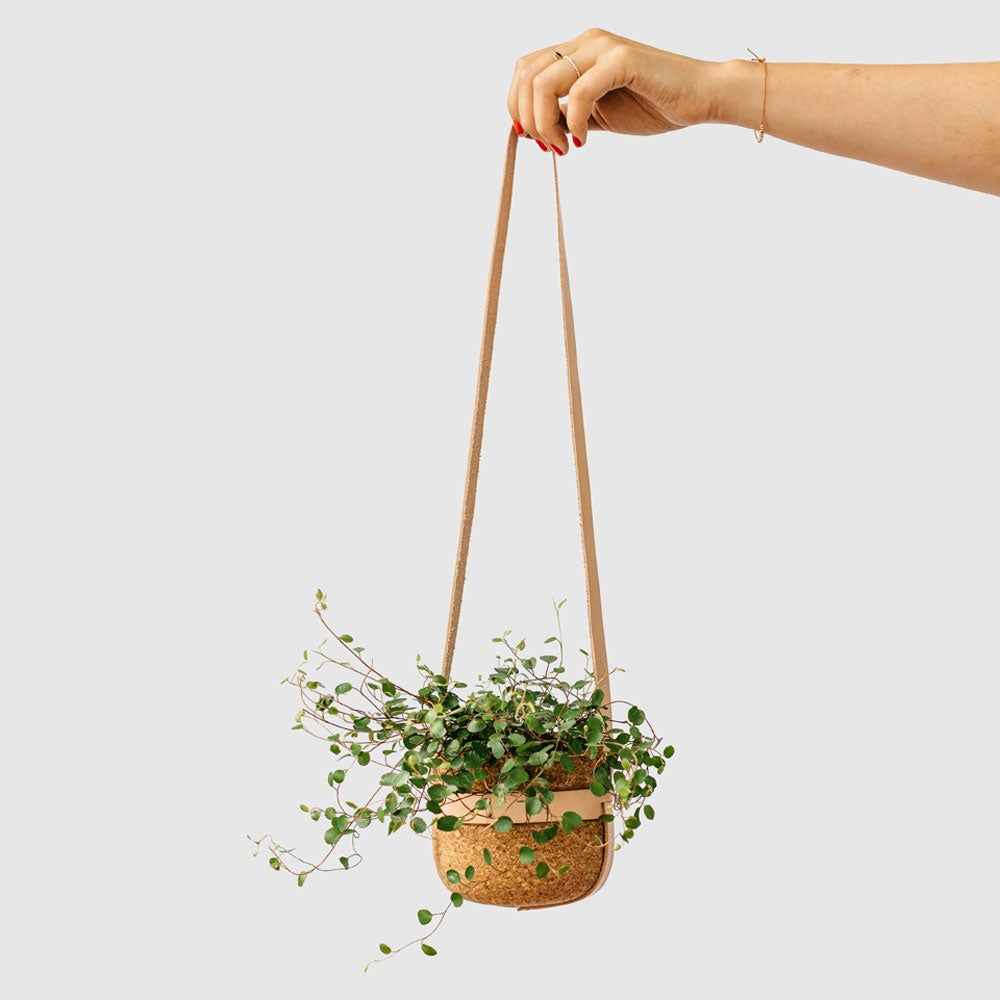 Image of Leather Strap Hanging Planter