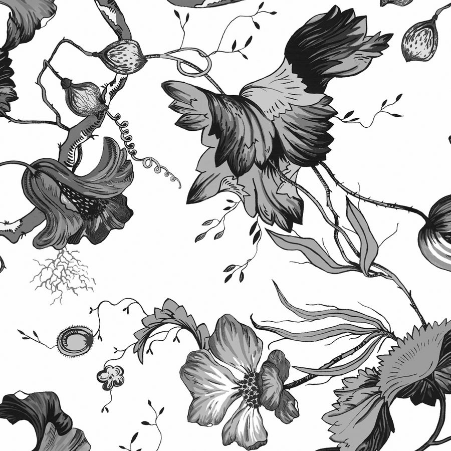 Image of French Floral in black & white