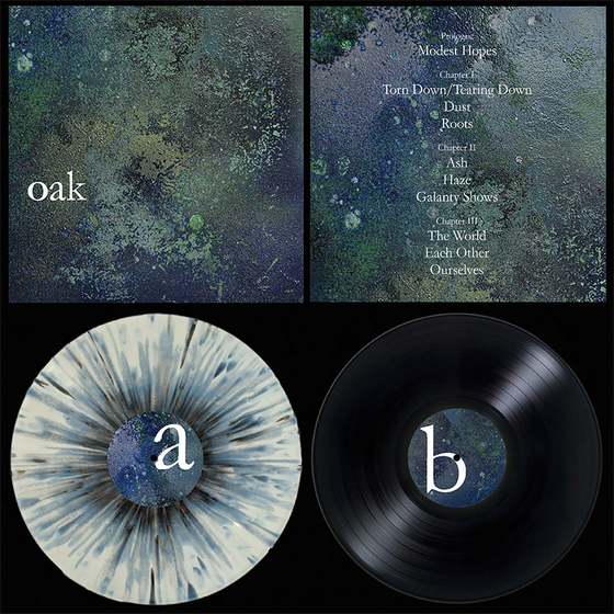 "Image of 'Oak' 12"" LP"