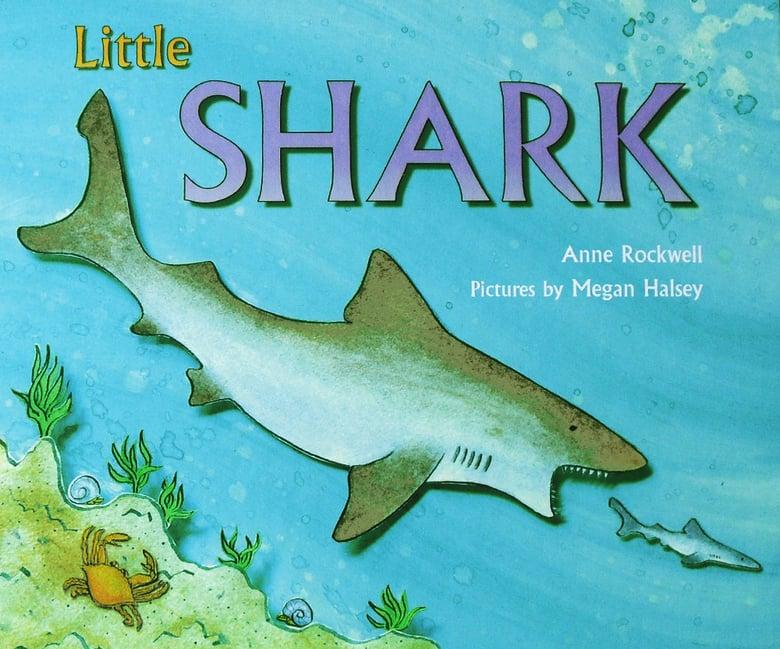 Image of Little Shark Book