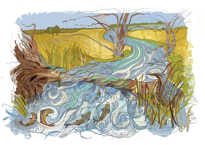 Image of Bittern River