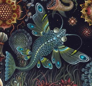 "Image of 'STAR FISH' ~ 20 x 20"" Signed Open Edition"