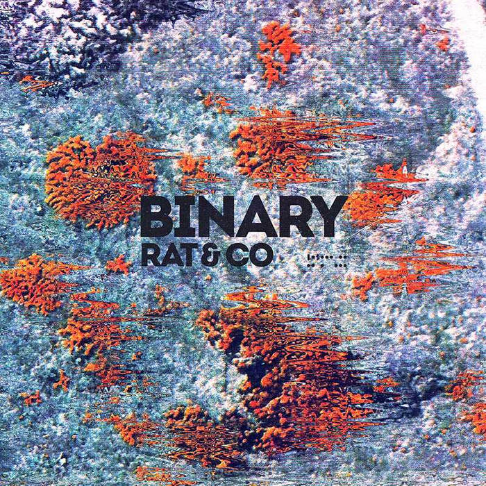 "Image of Rat & Co - ""BINARY"" LP"