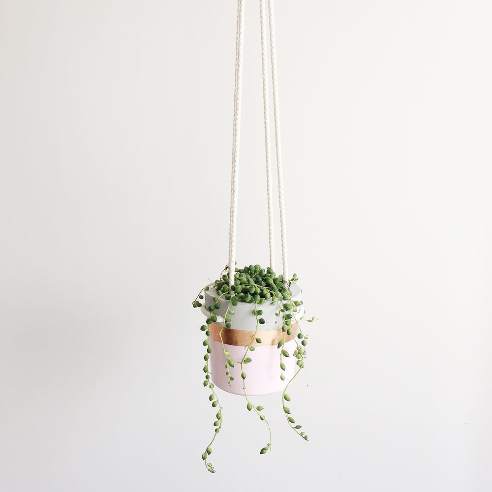 Image of Hanging Planter