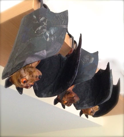 Image of A pair of Fruit Bats