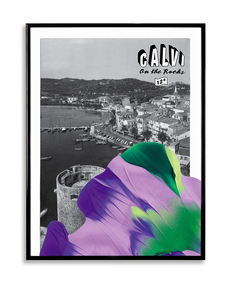 Image of CALVI 4