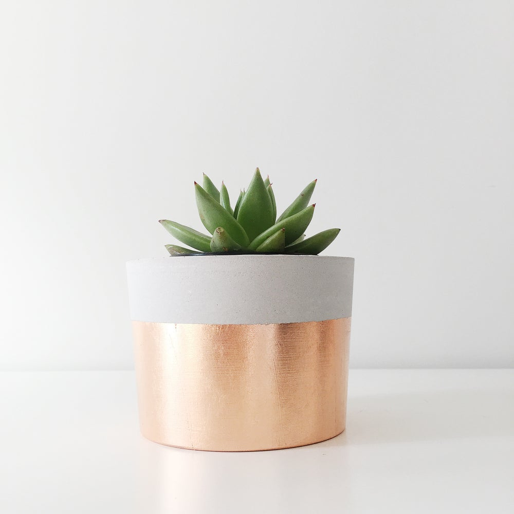 Image of Planter - rose gold