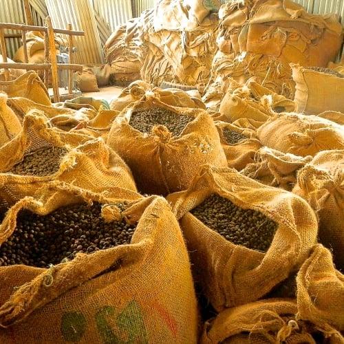 Image of Ethiopia Limmu Natural, Kossa Geshe