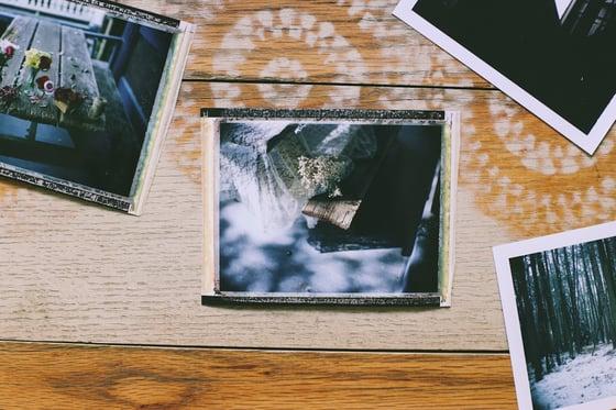 Image of Floral 2 Original Polaroid