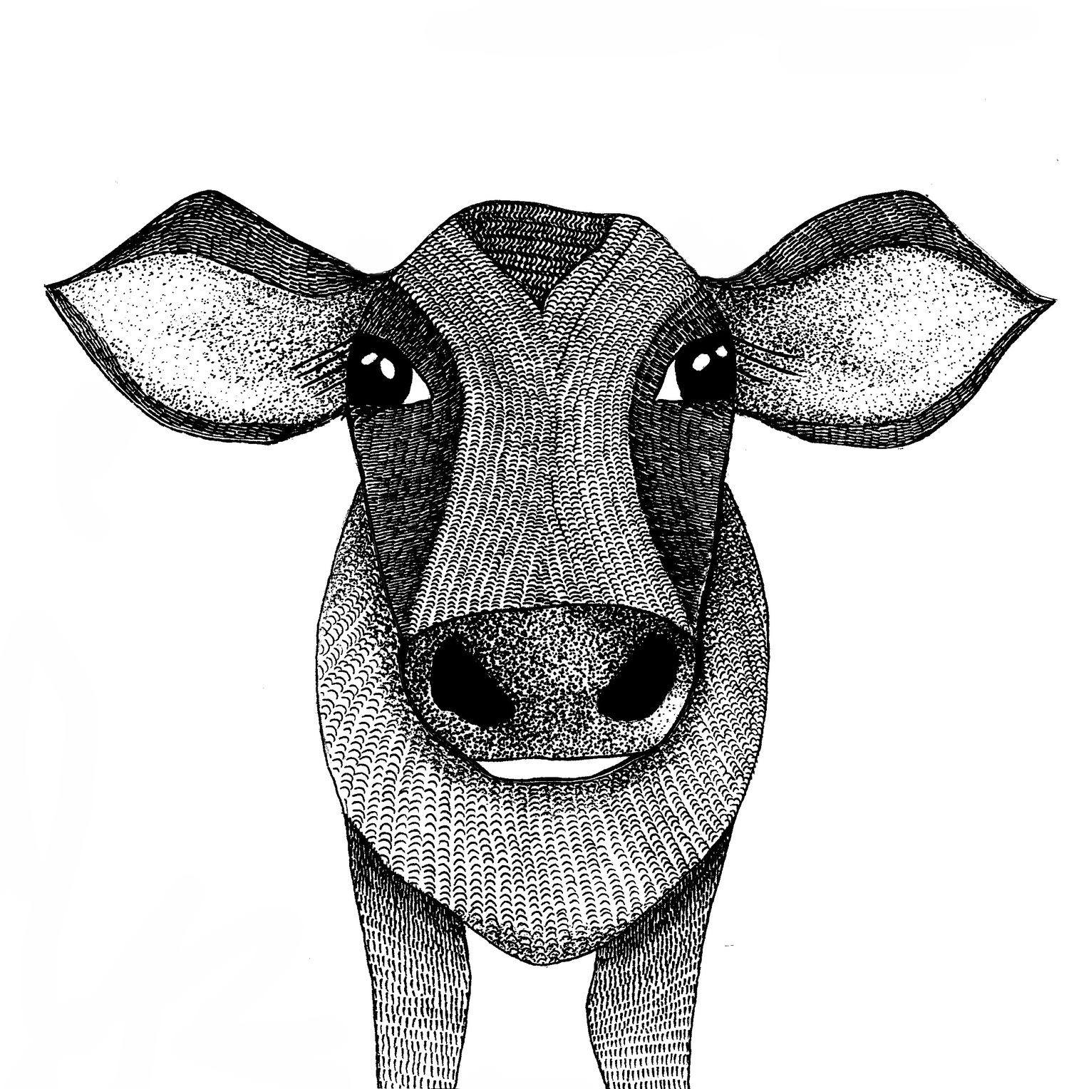 Image of Little Cow