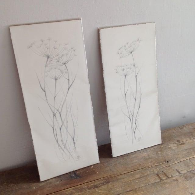 Image of Original drawings