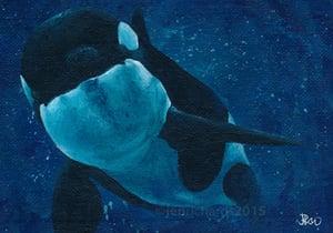 Image of 'Orca Calf' - Original painting