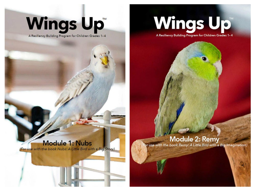 Image of Wings Up Resiliency Building Workbooks