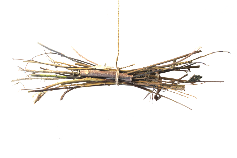Image of Dried Delights Foraged Branch Toy