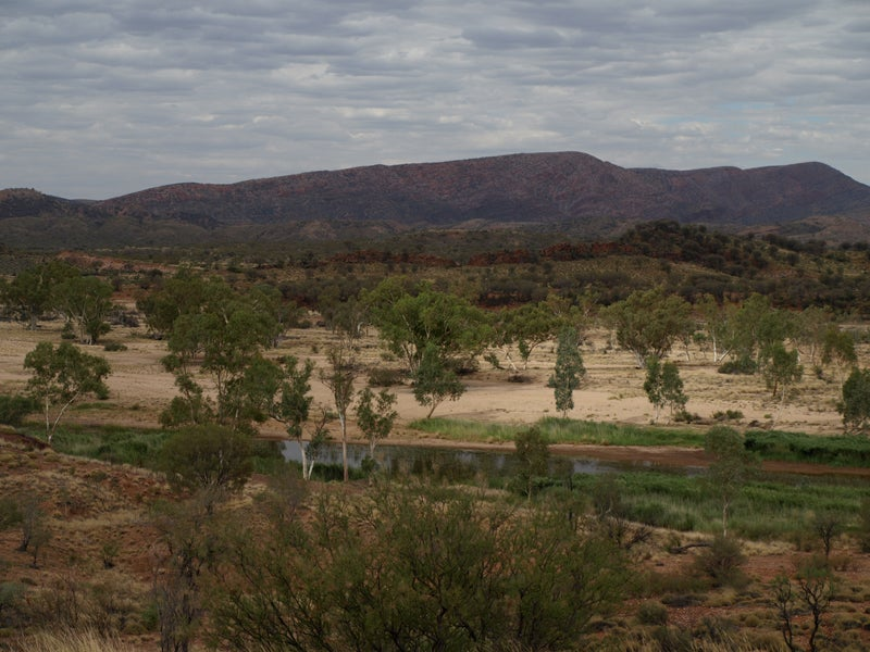 Image of Larapinta