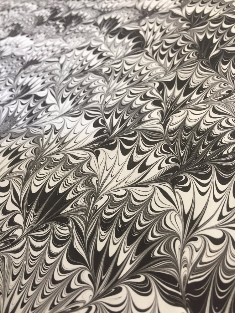 Image of Marbled Paper #36 black and white peacock