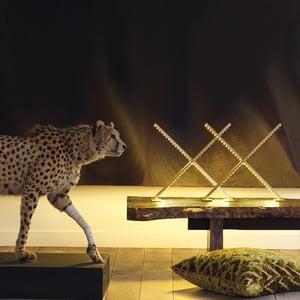 Image of Lampe X / Lamp X